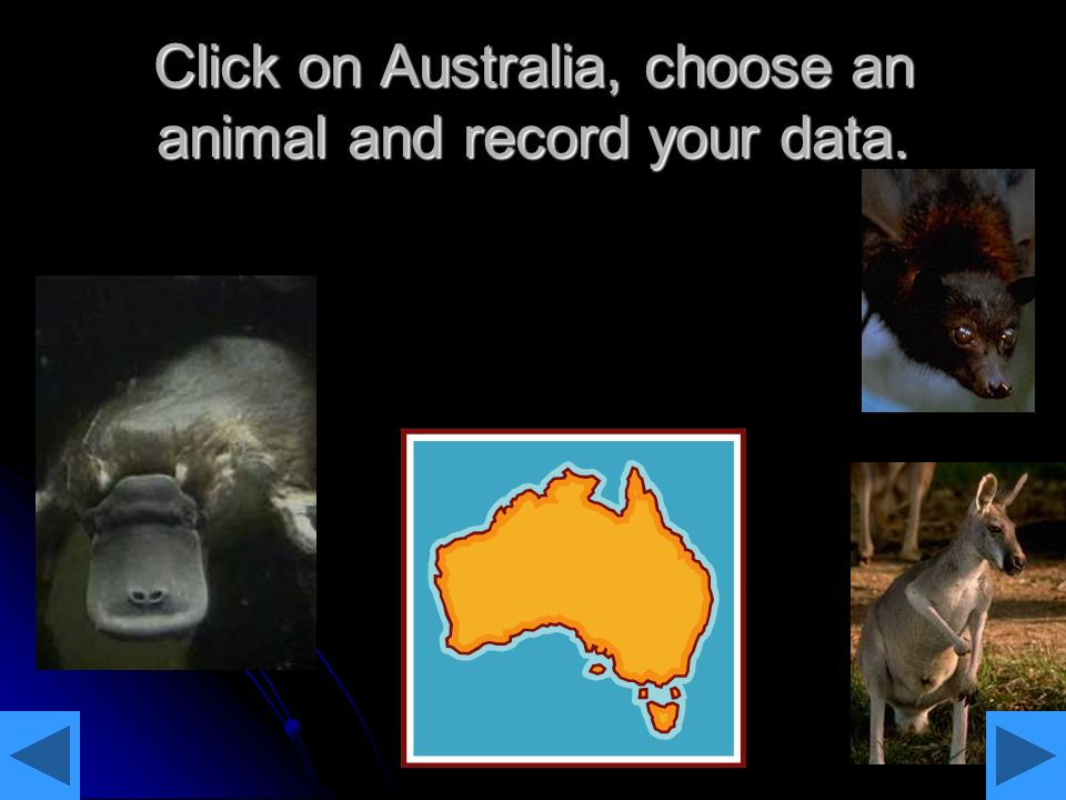 Click on Australia, choose an animal and record your data.