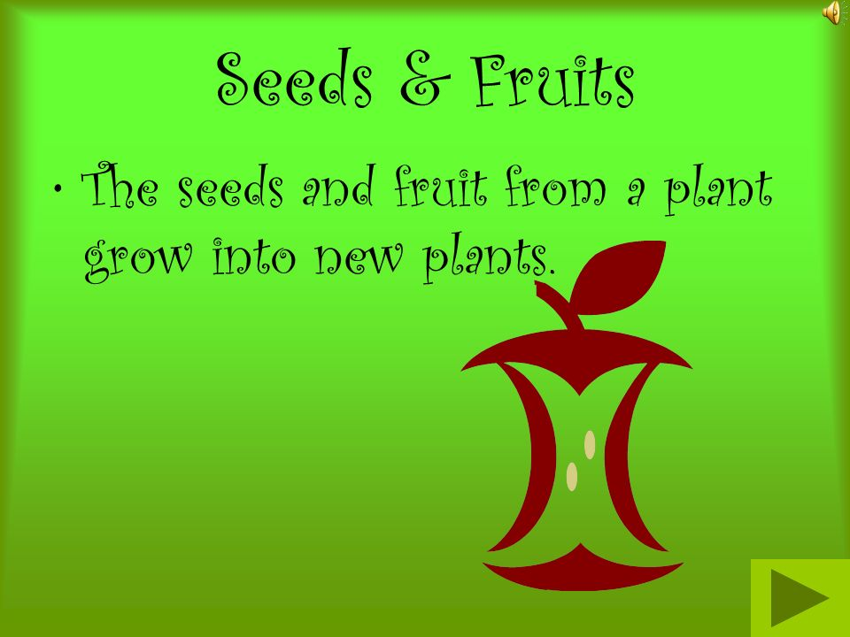 Seeds & Fruits The seeds and fruit from a plant grow into new plants.