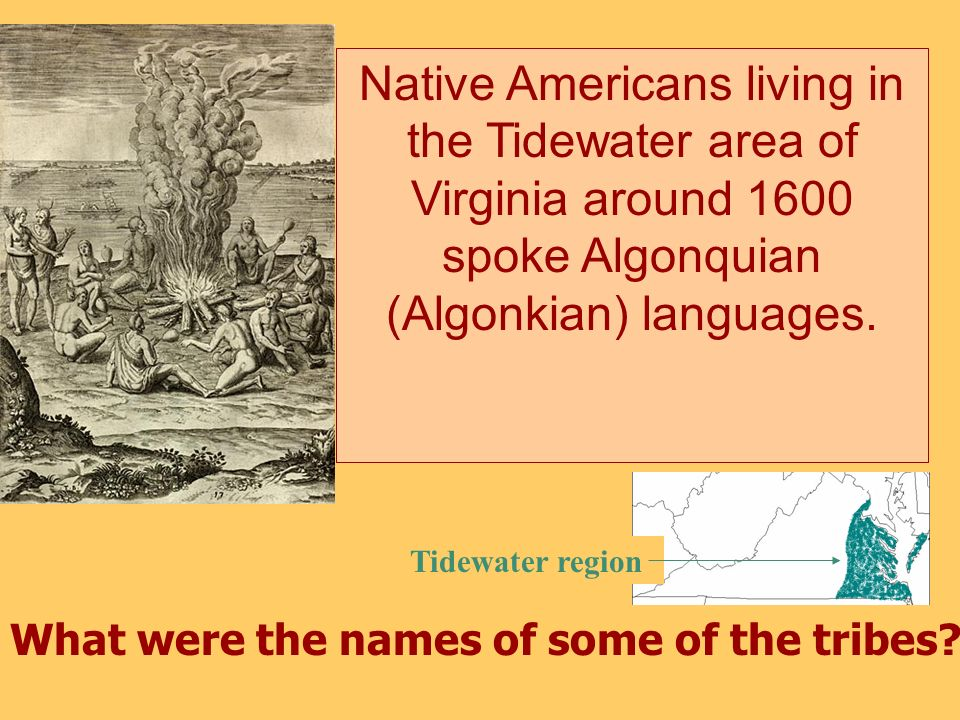 Native Americans living in the Tidewater area of Virginia around 1600 spoke Algonquian (Algonkian) languages.