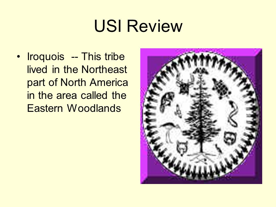 USI Review Iroquois -- This tribe lived in the Northeast part of North America in the area called the Eastern Woodlands.