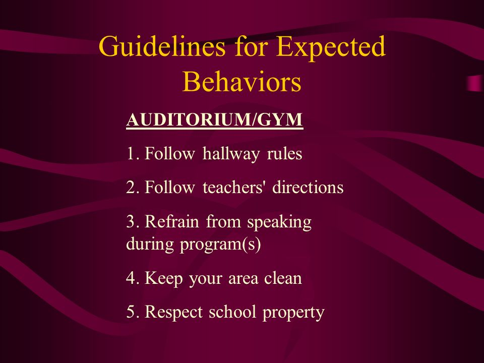 Guidelines for Expected Behaviors