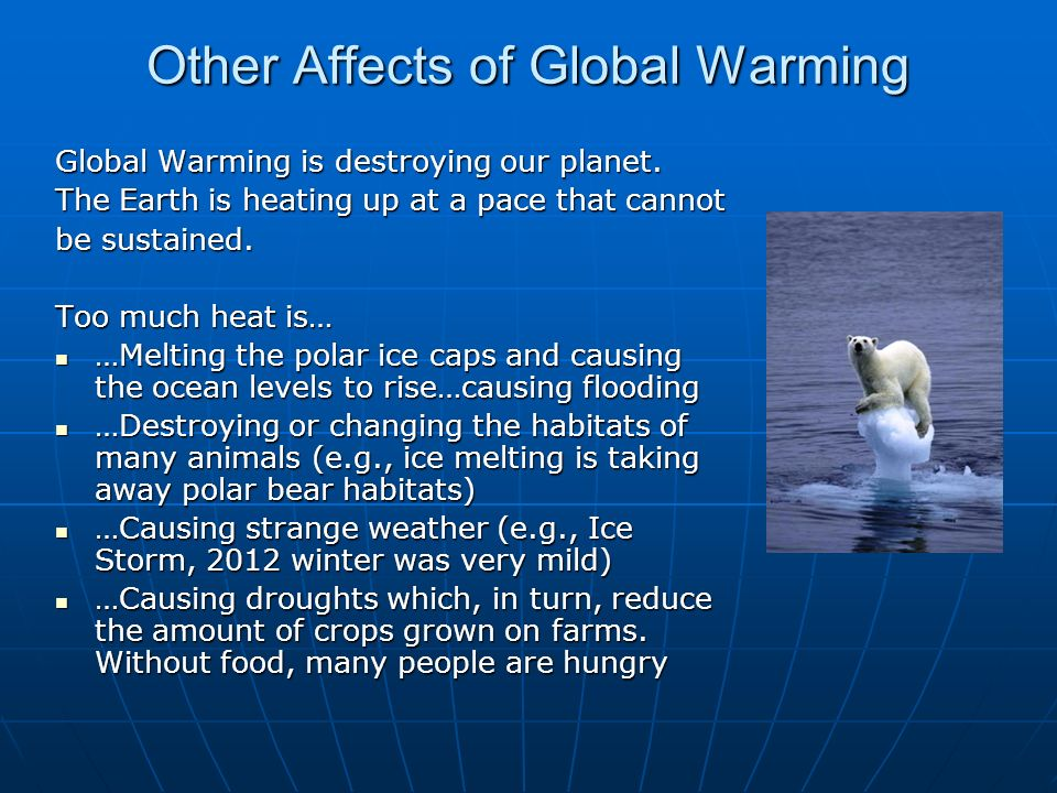 cause effect of global warming essay A model global warming essay with a lesson on how to vary your vocabulary when you write and an exercise to help you learn some key words cause and effect.