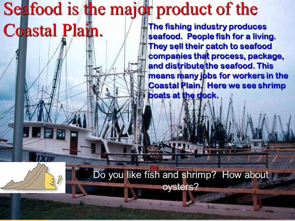 Seafood is the major product of the Coastal Plain.