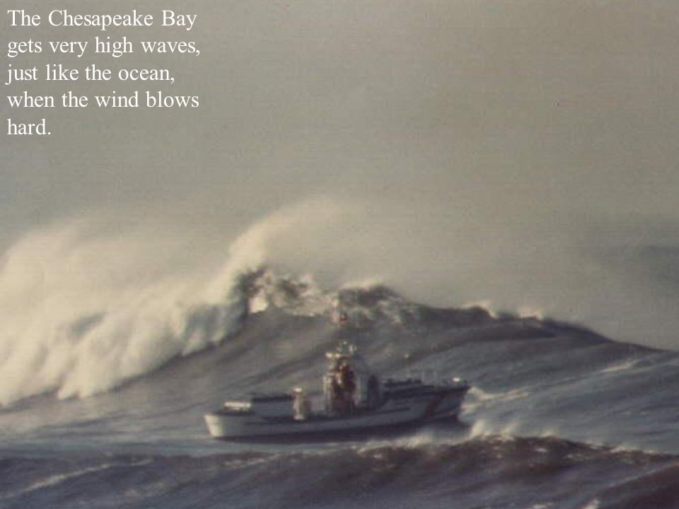 The Chesapeake Bay gets very high waves, just like the ocean, when the wind blows hard.