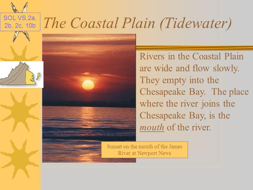 The Coastal Plain (Tidewater)