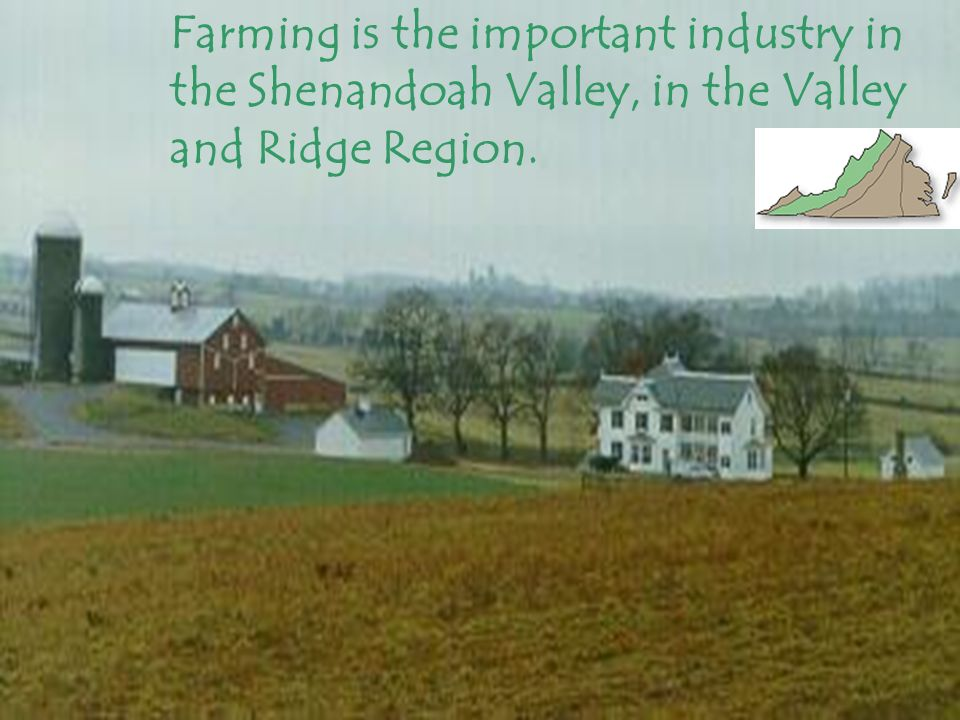 Farming is the important industry in the Shenandoah Valley, in the Valley and Ridge Region.