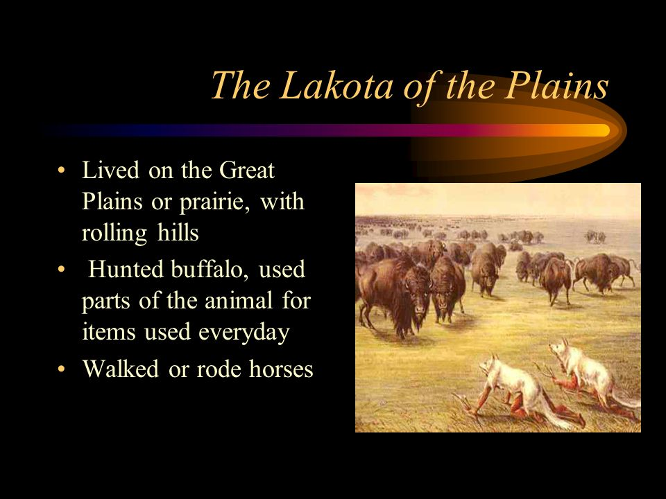 The Lakota of the Plains