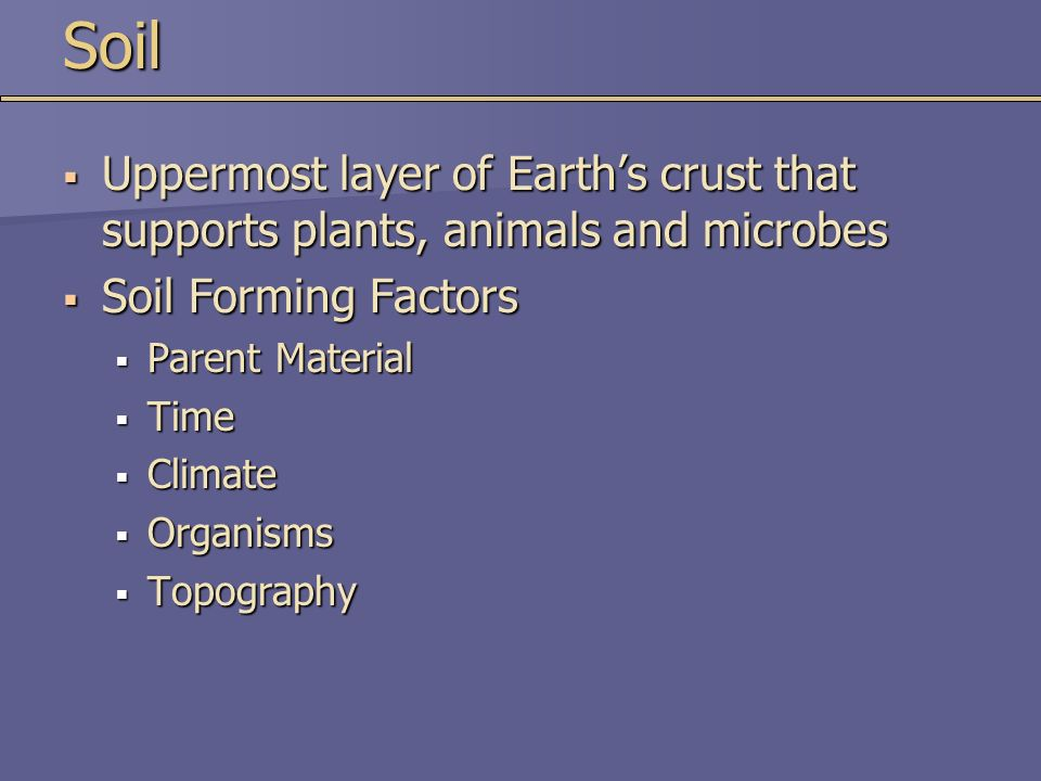 Chapter 15 soil resources ppt video online download for Soil forming factors