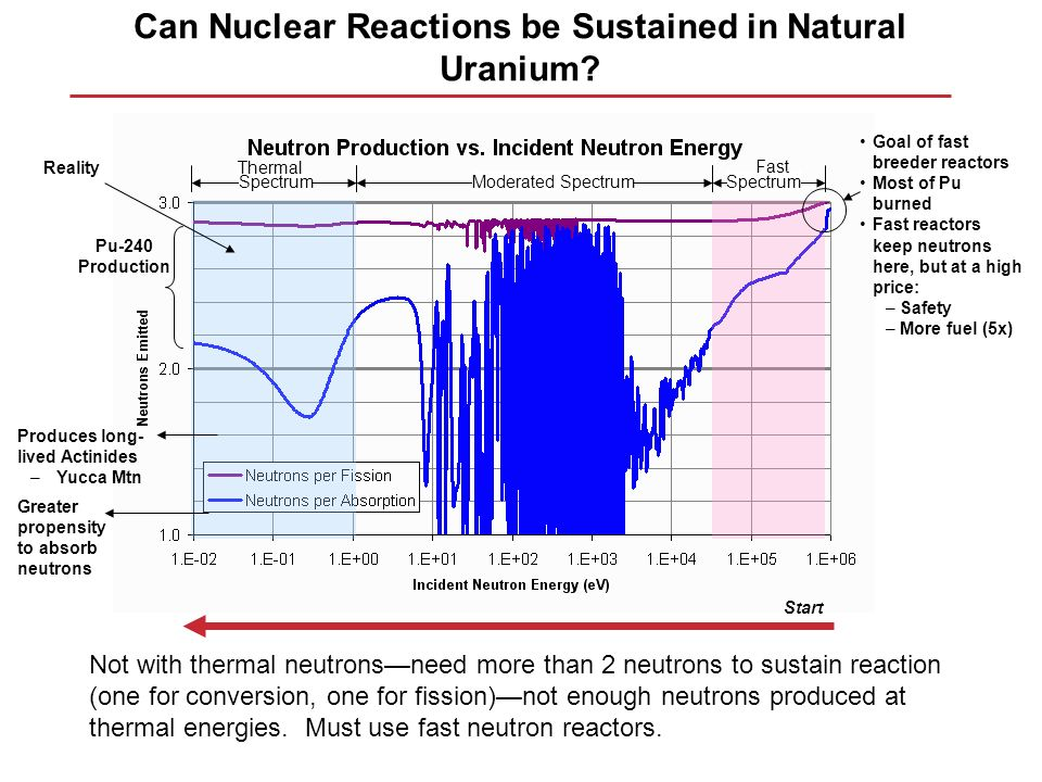 Can Nuclear Reactions be Sustained in Natural Uranium