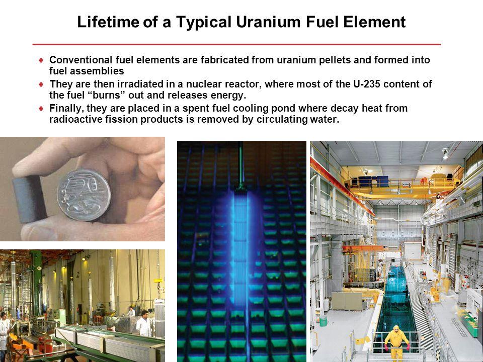 Lifetime of a Typical Uranium Fuel Element