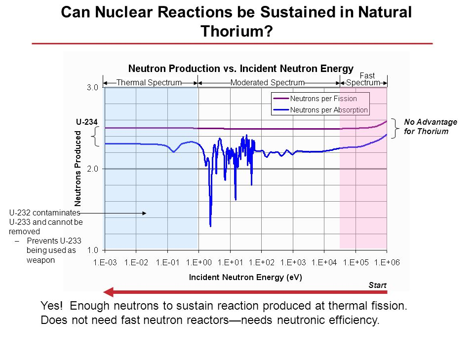 Can Nuclear Reactions be Sustained in Natural Thorium