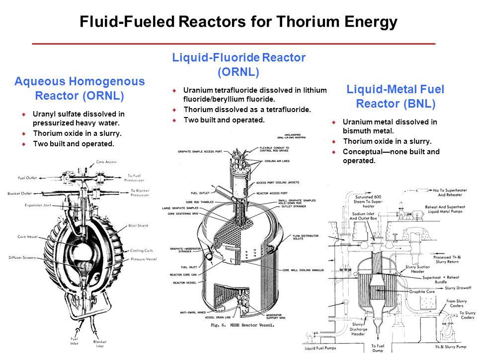Fluid-Fueled Reactors for Thorium Energy