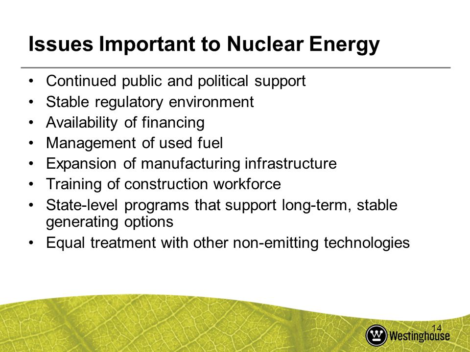 Issues Important to Nuclear Energy