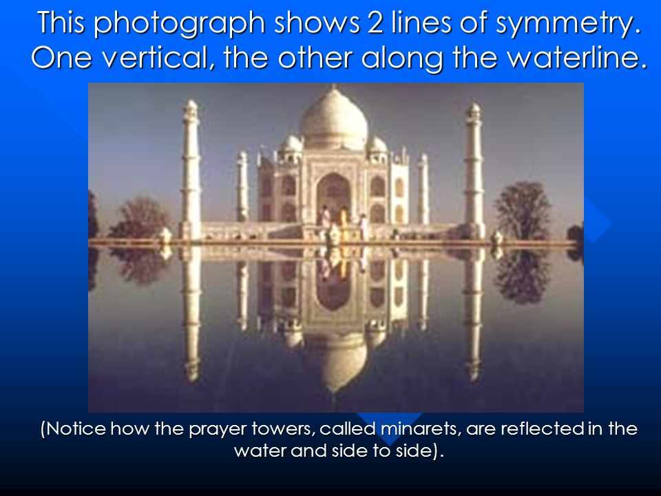 This photograph shows 2 lines of symmetry