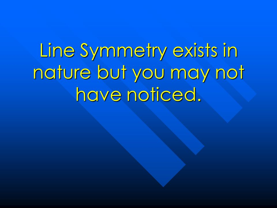 Line Symmetry exists in nature but you may not have noticed.