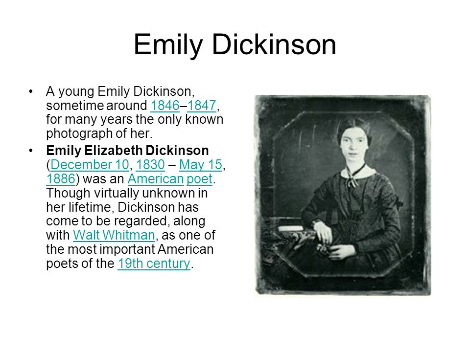 an introduction to the life of emily elizabeth dickinson an american poet of the 19th century