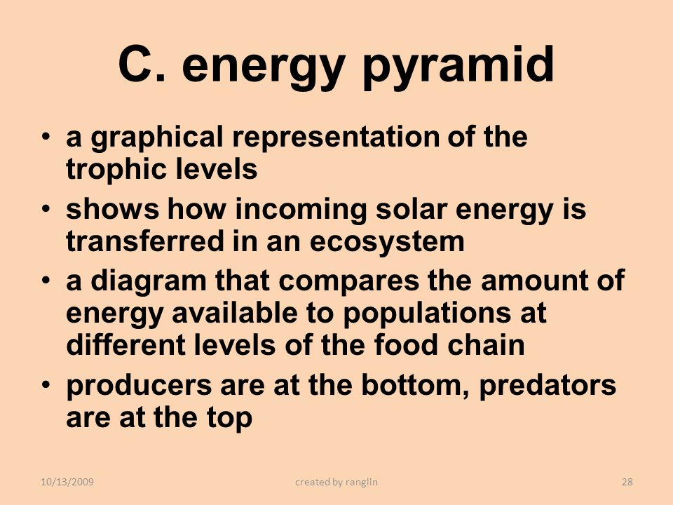 C. energy pyramid a graphical representation of the trophic levels