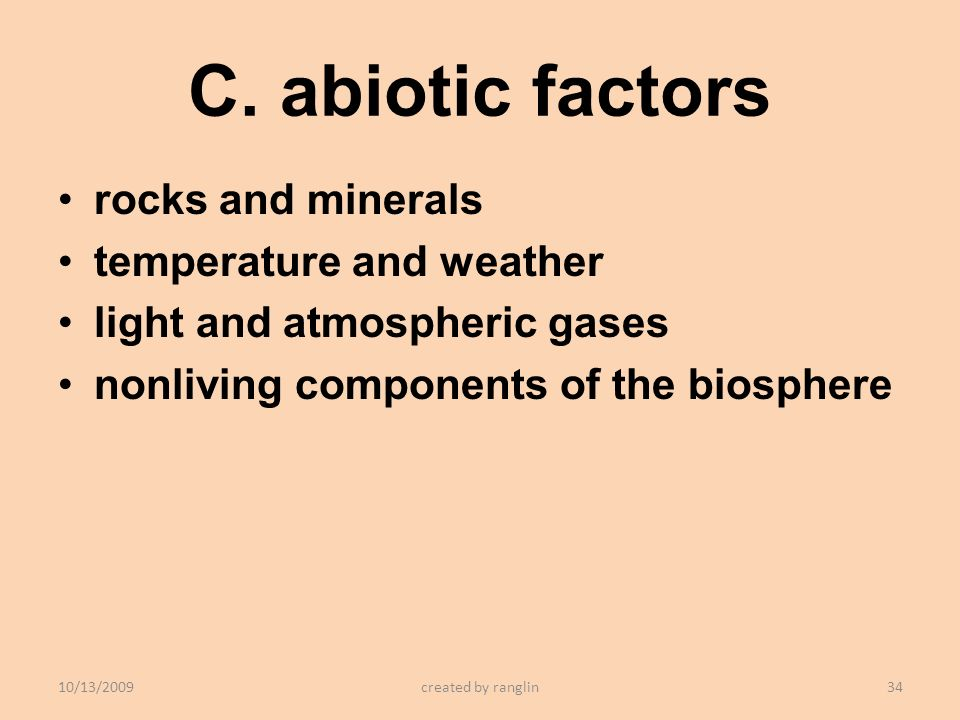 C. abiotic factors rocks and minerals temperature and weather