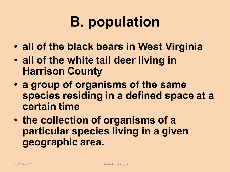 B. population all of the black bears in West Virginia