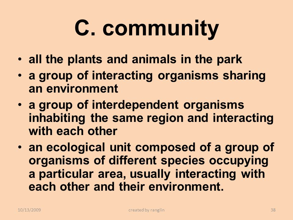 C. community all the plants and animals in the park