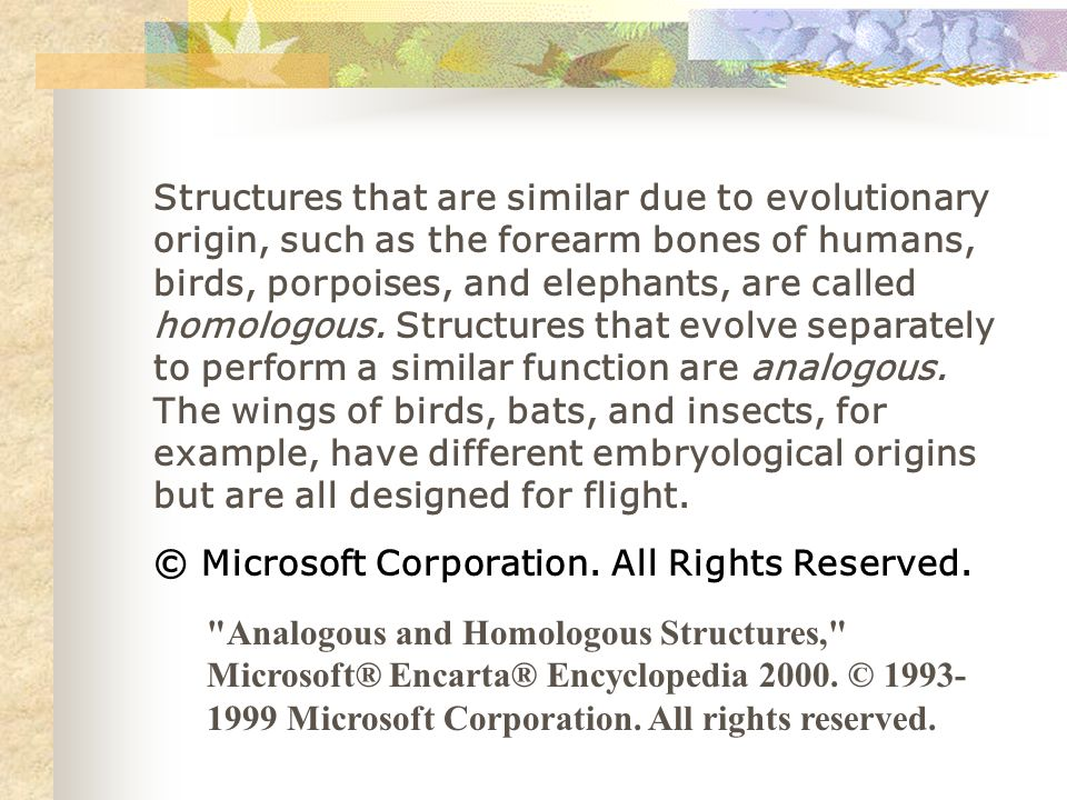 Structures that are similar due to evolutionary origin, such as the forearm bones of humans, birds, porpoises, and elephants, are called homologous. Structures that evolve separately to perform a similar function are analogous. The wings of birds, bats, and insects, for example, have different embryological origins but are all designed for flight.