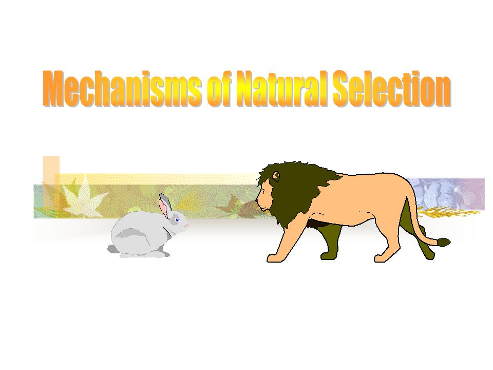 Mechanisms of Natural Selection