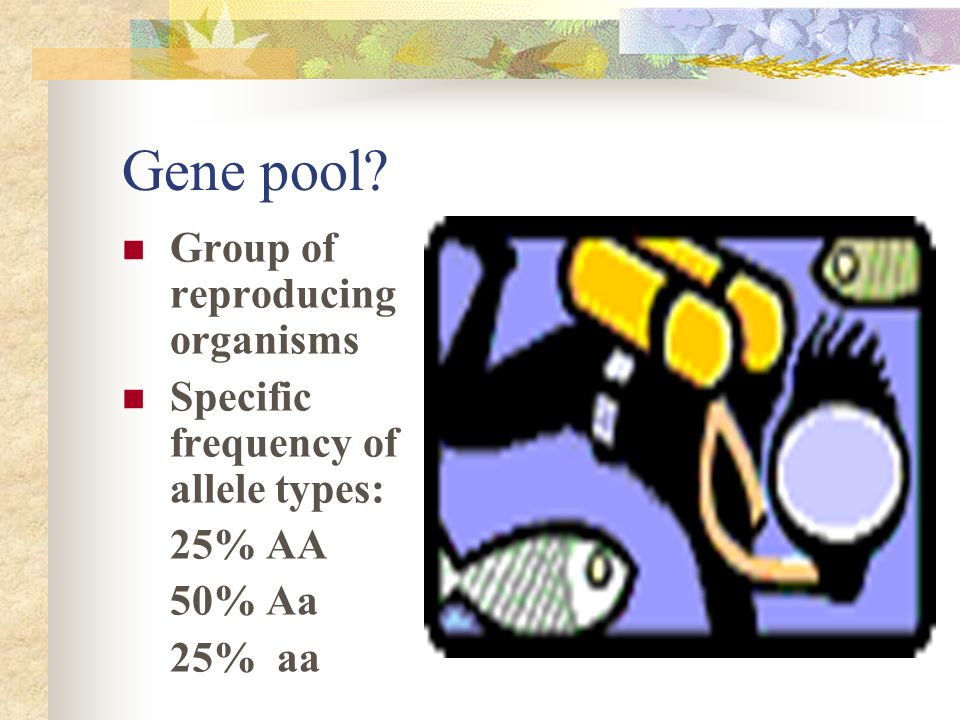 Gene pool Group of reproducing organisms