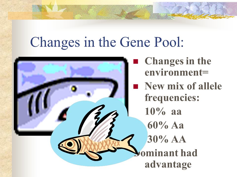 Changes in the Gene Pool:
