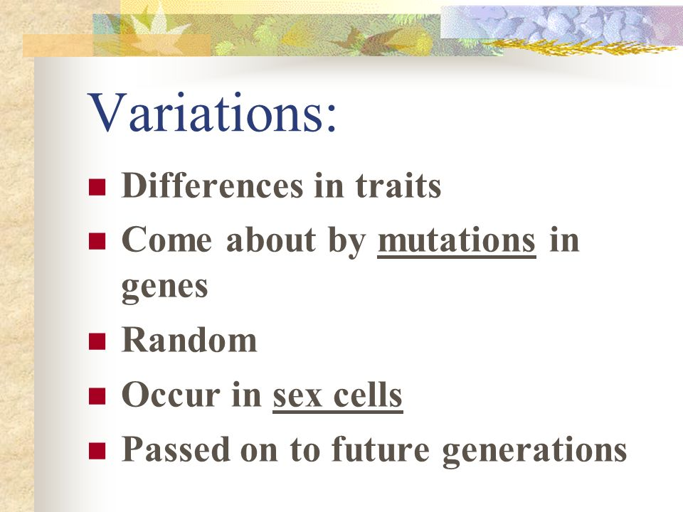 Variations: Differences in traits Come about by mutations in genes
