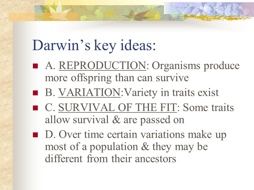 Darwin's key ideas:A. REPRODUCTION: Organisms produce more offspring than can survive. B. VARIATION:Variety in traits exist.