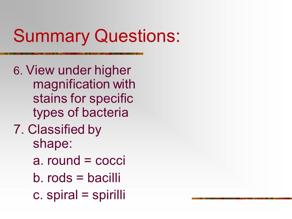 Summary Questions: 7. Classified by shape: a. round = cocci