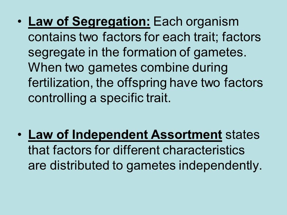 Law of Segregation: Each organism contains two factors for each trait; factors segregate in the formation of gametes. When two gametes combine during fertilization, the offspring have two factors controlling a specific trait.