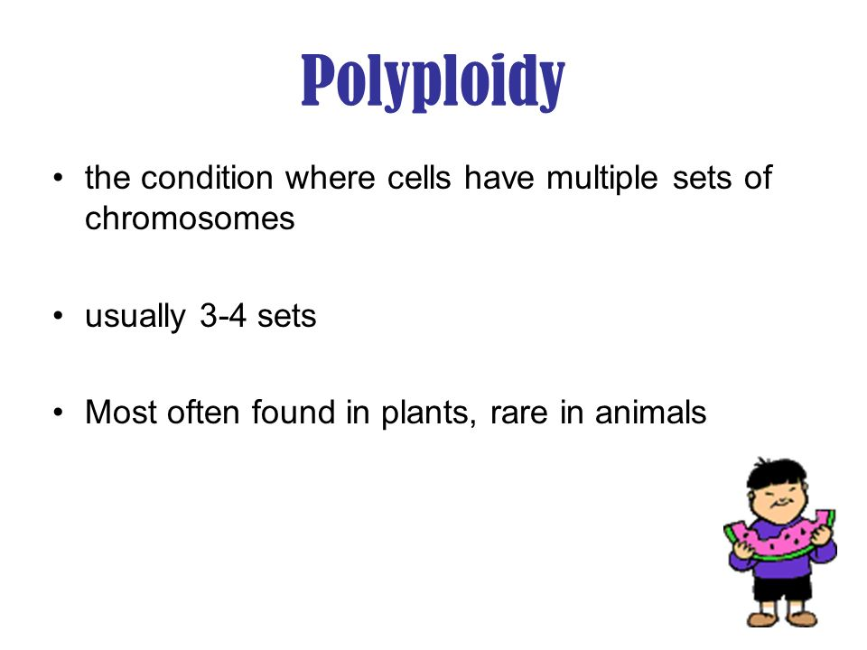 Polyploidy the condition where cells have multiple sets of chromosomes