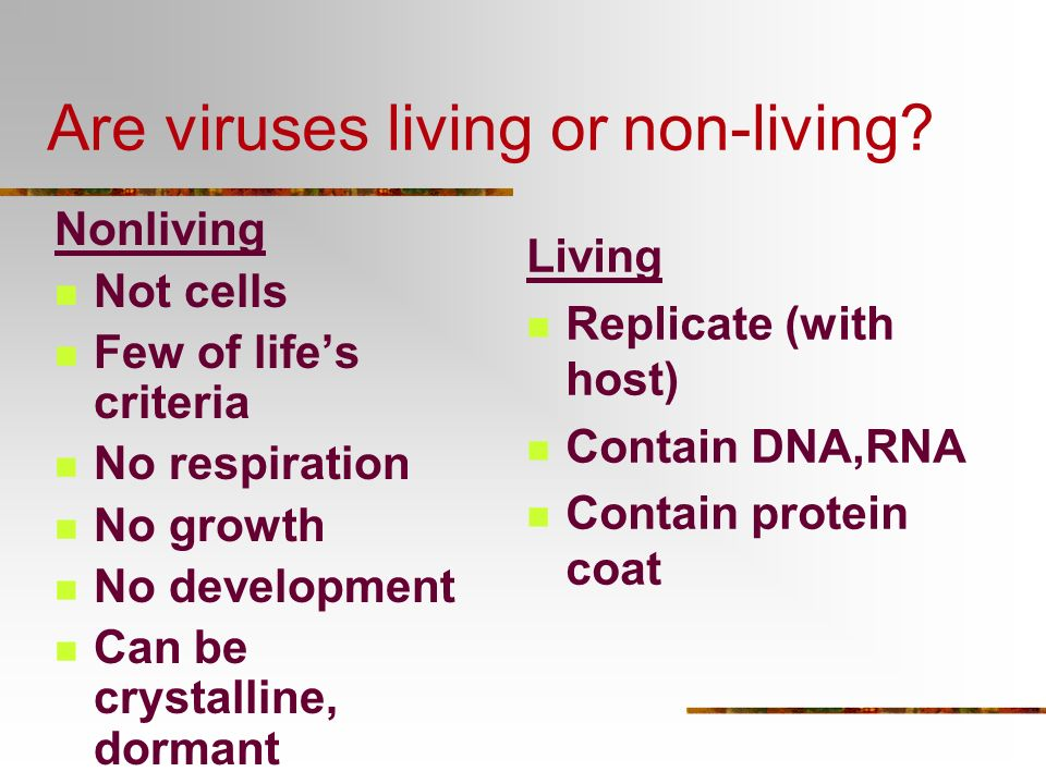 Are viruses living or non-living