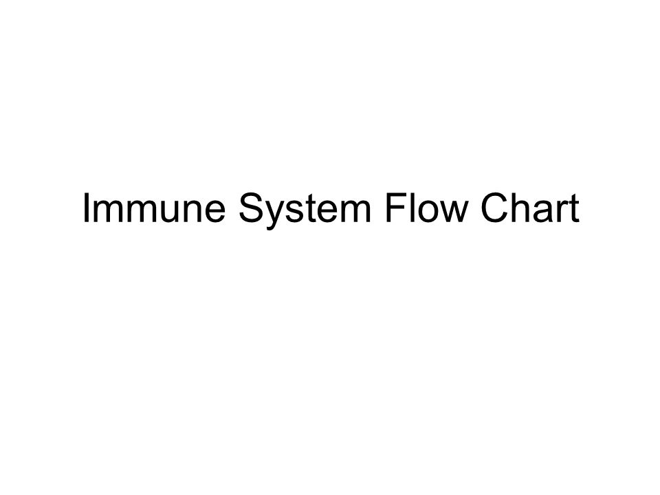 Immune System Flow Chart