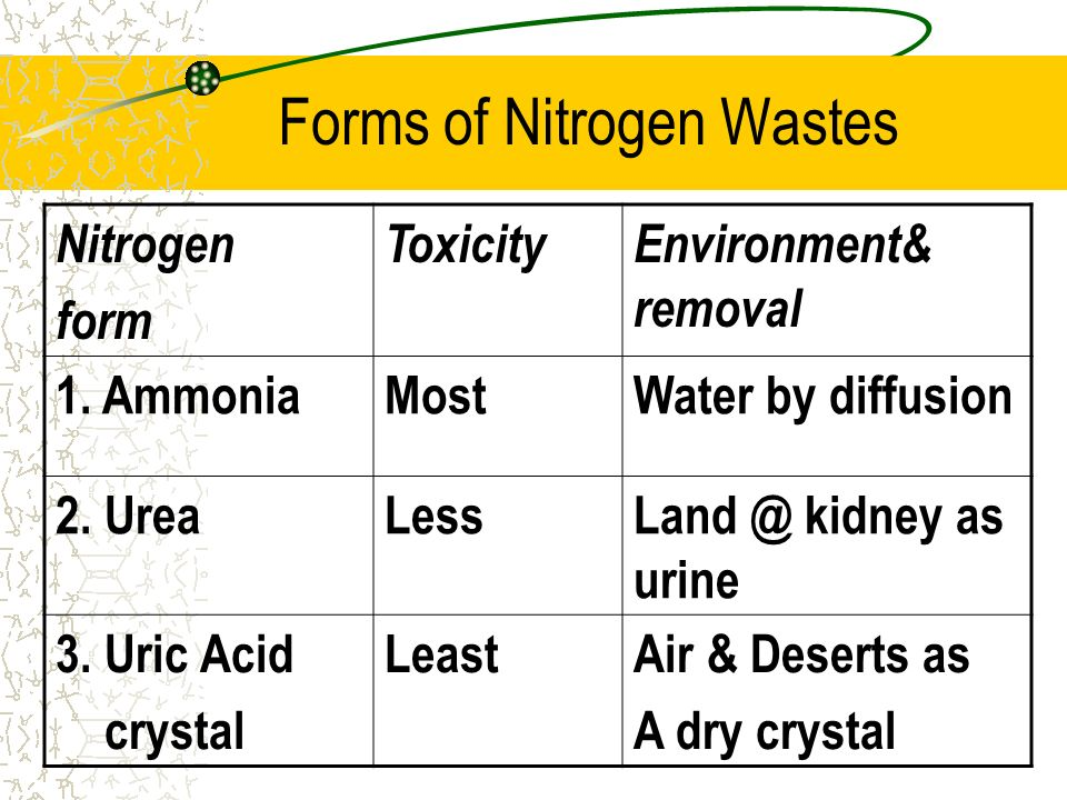 Forms of Nitrogen Wastes