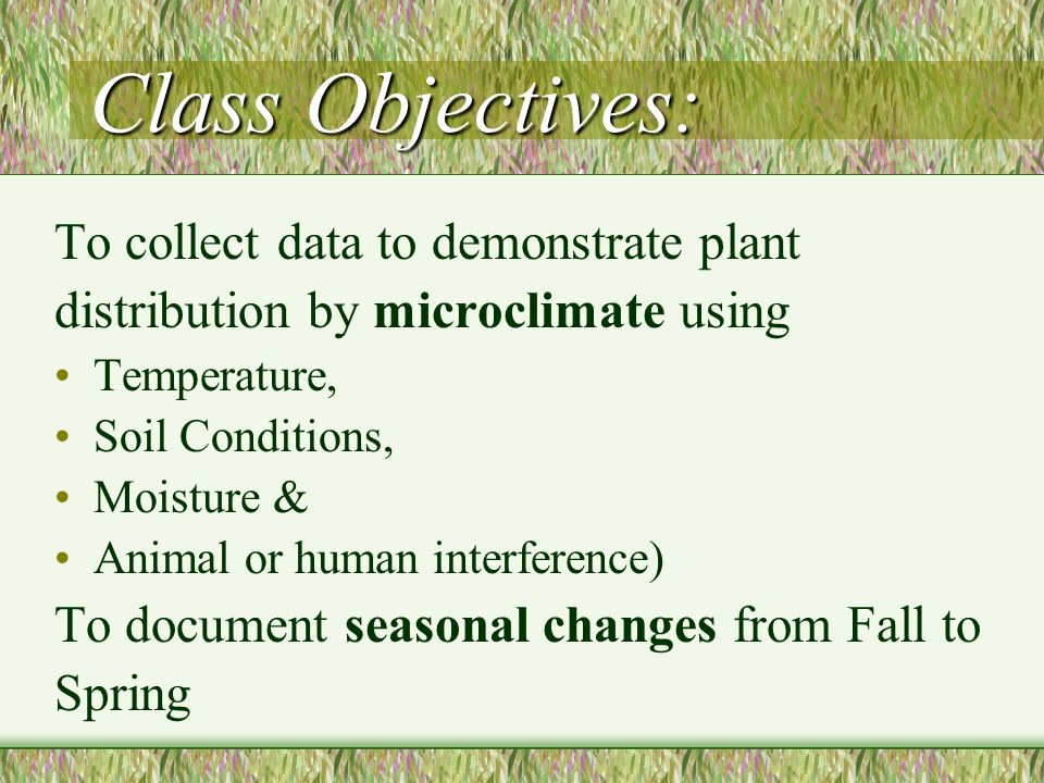 Class Objectives: To collect data to demonstrate plant