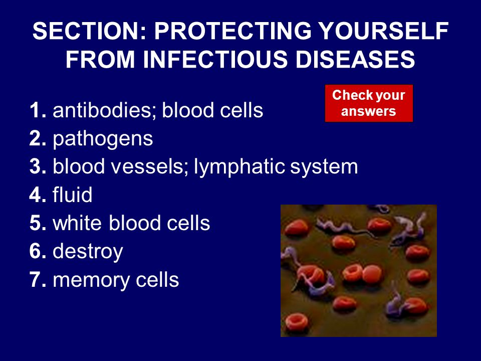 SECTION: PROTECTING YOURSELF FROM INFECTIOUS DISEASES