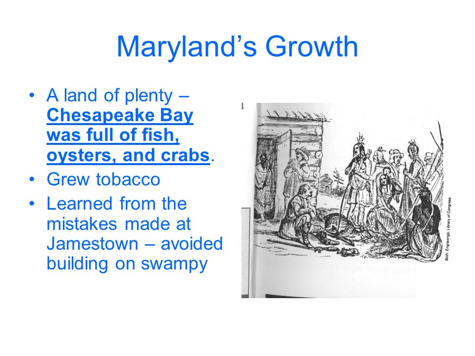 Growth in the Chesapeake Bay