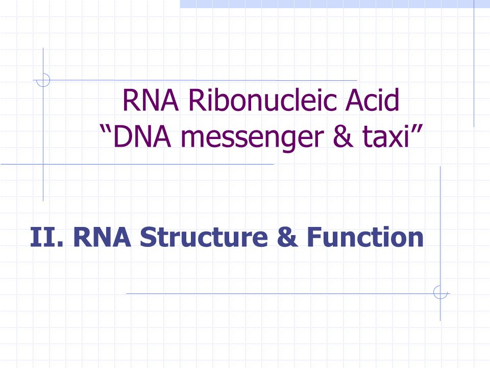 RNA Ribonucleic Acid DNA messenger & taxi