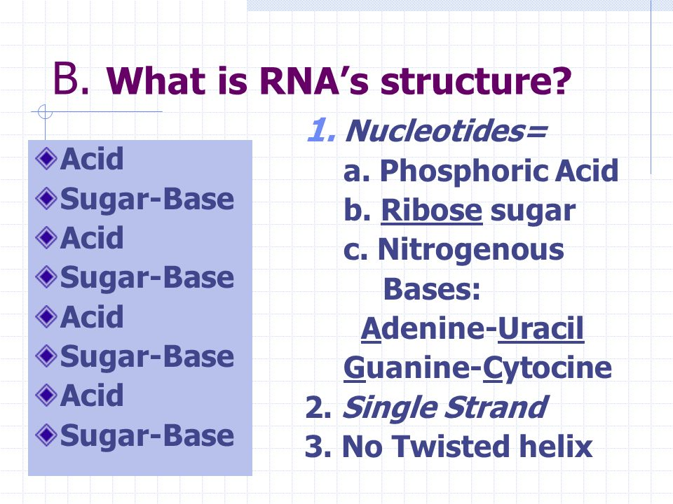 B. What is RNA's structure