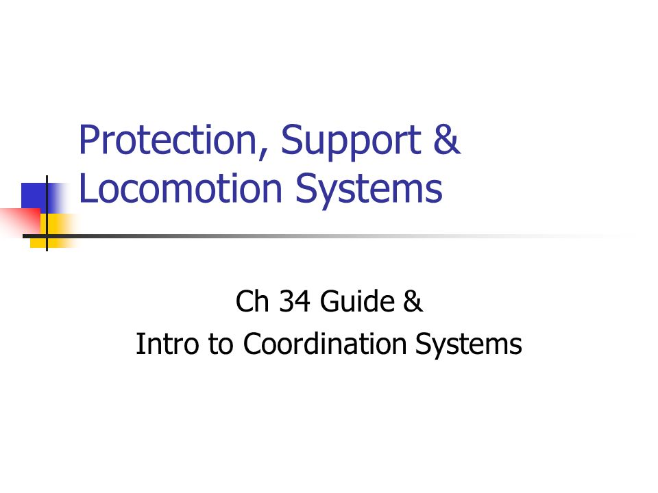 Protection, Support & Locomotion Systems