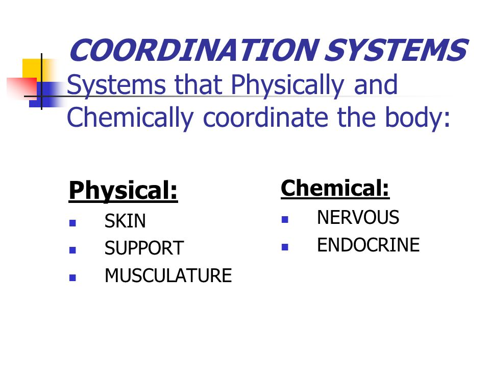 COORDINATION SYSTEMS Systems that Physically and Chemically coordinate the body: