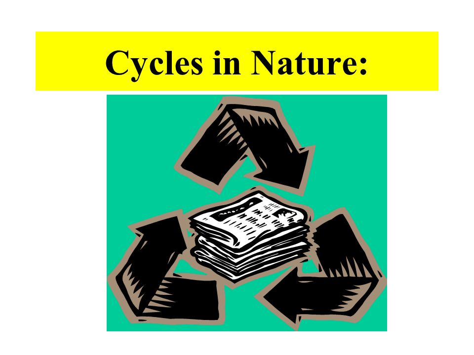 Cycles in Nature: