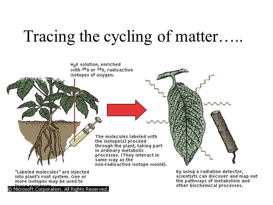 Tracing the cycling of matter…..