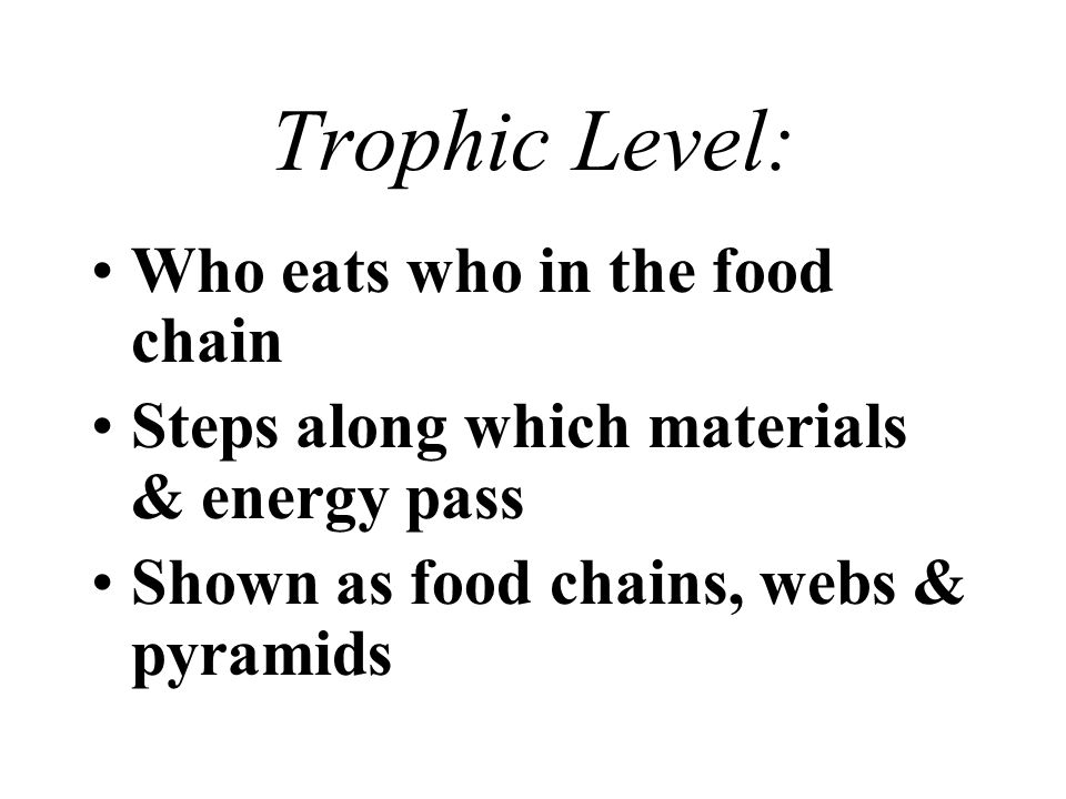Trophic Level: Who eats who in the food chain