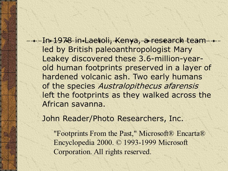 In 1978 in Laetoli, Kenya, a research team led by British paleoanthropologist Mary Leakey discovered these 3.6-million-year- old human footprints preserved in a layer of hardened volcanic ash. Two early humans of the species Australopithecus afarensis left the footprints as they walked across the African savanna.