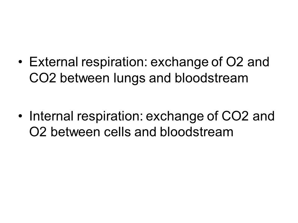 External respiration: exchange of O2 and CO2 between lungs and bloodstream