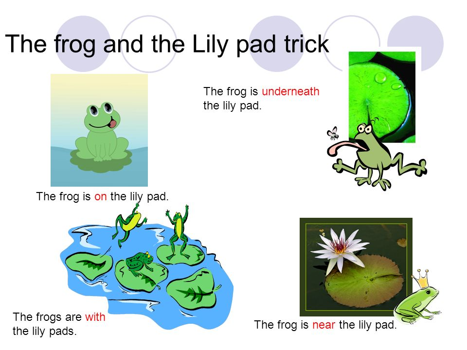 The frog and the Lily pad trick