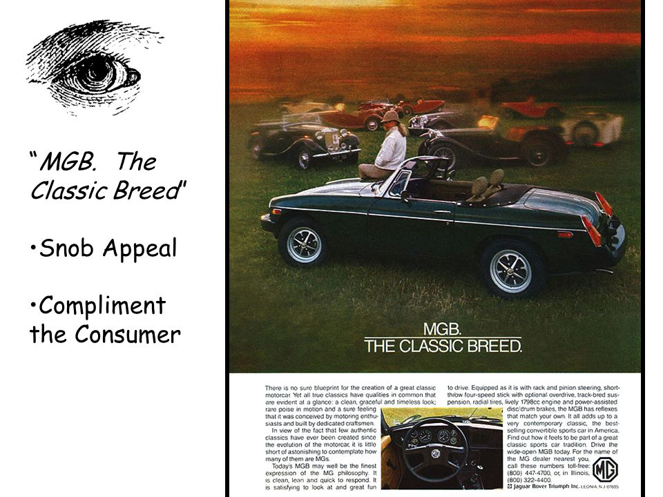 MGB. The Classic Breed